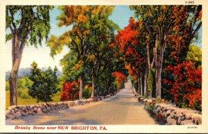 Pennsylvania Beauty Scene Near New Brighton Curteich