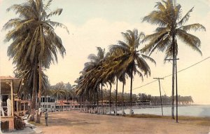 Causeway edging Panama Bay Panama Unused