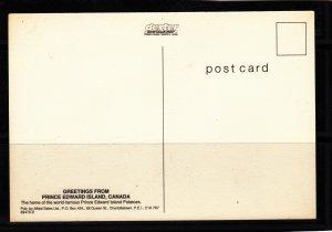 P1766 vintage prince edward island canada we grow em big potatoes postcard