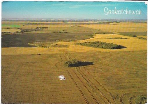 Canada Prairies.  Wheat Fields at rest