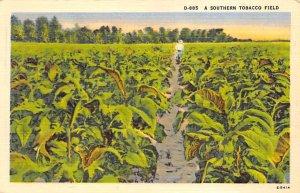Southern Tobacco Field Tobacco Unused