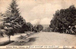 California Oakland View Of Jackson Street 1907