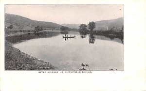 River Scenery at Downsville Bridge in Downsville, New York