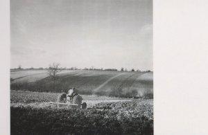 Fordson Major Plough Farm Tractor in 1950s Photo Postcard