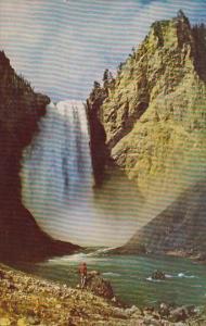 Lower Falls Yellowstone River Yellowstone National Park