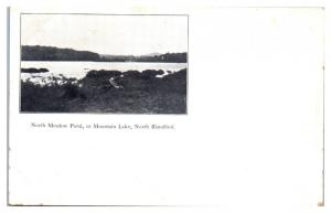 Early 1900s North Meadow Pond or Mountain Lake, North Blandford, MA Postcard