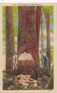 Washington Men CUtting Down Giant Fir