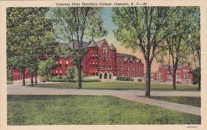 New York Oneonta State Teachers College Curteich