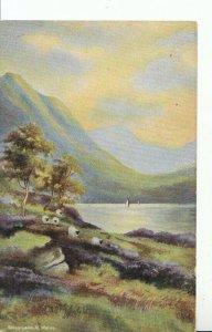Wales Postcard - Dinas Lake - North Wales - Ref 15373A