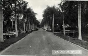 malay malaysia, PENANG, Peel Avenue (1940s) RPPC Postcard