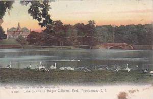 Rhode Island Providence Lake Scene In Roger Williams Park 1907