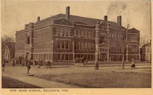 Beatrice Nebraska~High School~Boys Goofing Around in Road~1909 Sepia Postcard