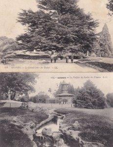 Rennes Les Serres du Jardin Des Plantes Antique French 2x Postcard