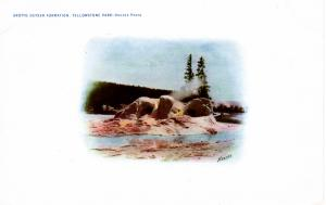 Grotto Geyser Formation, Yellowstone National Park, 1904-07