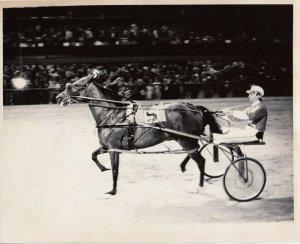 HAZEL PARK RACEWAY, Harness Horse Race , SKIPPER DEXTER Wins 1976