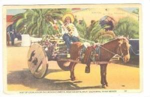 A Bit of Local Color, Old Mexican Horse-pulled Caretta, Agua Caliente, Baja C...