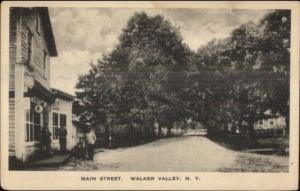 Walker Valley NY Shawangunk Ulster County c1920s Postcard