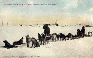 Returning from a polar bear hunt
