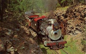 SD - Hill City. Klondike Casey, 1880 Train