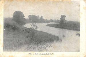 Lakeside Park New York Scenic Waterfront Antique Postcard K95089
