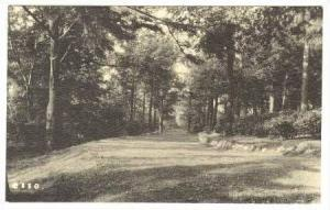 RP  Roadway, Grounds of the Sanatorium of the Christian Science Benevolent As...