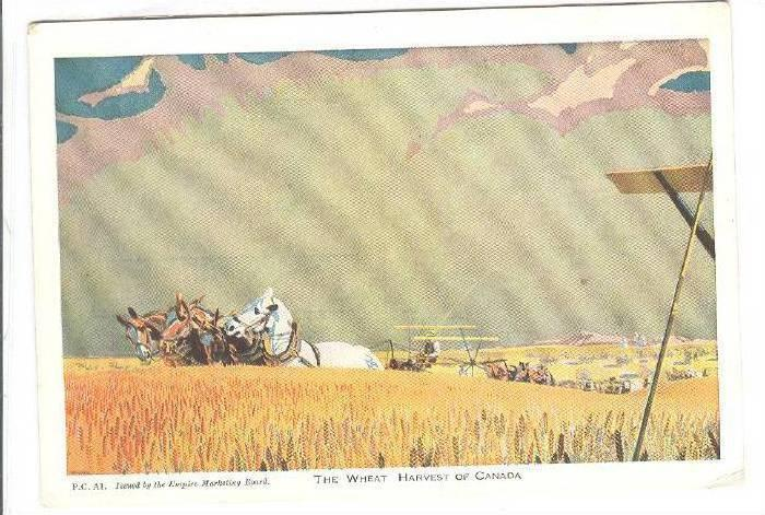 Wheat Harvest , Canada , 00-10s