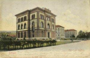 switzerland, ZOFINGEN, Museum und Schulhaus (1900s) Postcard