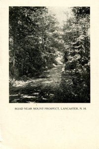 NH - Lancaster. Road Near Mt. Prospect circa 1900