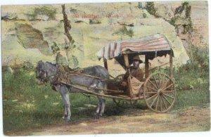 Old Hannibal, Hannibal, Missouri, MO, Donkey & Cart, Divided Back