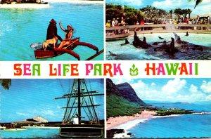 Hawaii Oahu Sea Life Park Multi View