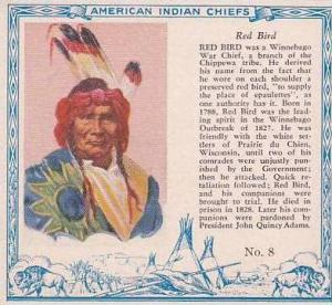 Red Man Chewing Tobacco American Indian Chiefs No 8 Red Bird Chippewa Tribe