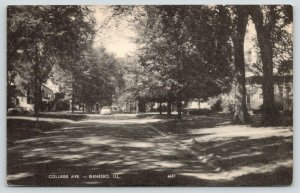 Geneseo Illinois~College Avenue~Shaded by Trees~Car Aproaching~1940s