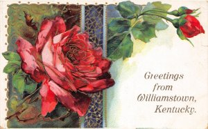 F74/ Williamstown Kentucky Postcard 1909 Greetings from Williamstown 2
