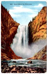 TAMMEN 8167 Lower Falls, Yellowstone National Park