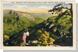 Western,NC Postcard,Linville Gorge/Wiseman's View,Near Mint!
