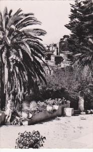 France Grasse Vue prise du Jardin du Parc Palace