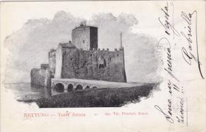 Nettuno , province of Rome , Lazio , Italy , 00-10s : Torre Astura