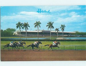Chrome HORSE RACING SCENE Hialeah - Near Miami Beach Florida FL AG5418@