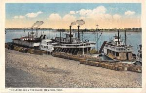 Memphis Tennessee The Levee from the Bluff Antique Postcard J52595