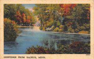 Backus Minnesota~Still Waters on Pine Mountain Lake~40 Fish~1940 Linen Postcard