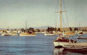 BALBOA HARBOR Southern California 76 Gasoline Union Oil 1941 Vintage Postcard