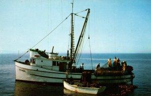 Puget Sound Salmon Fishing