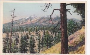 Fred Harvey San Francisco Mountains Near Flagstaff Arizona Detroit Publishing