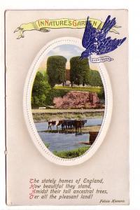 Blue Bird of Happiness, Felicia Hemans England Poem, Upper La Have Nova Scoti...
