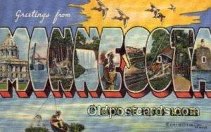 Minnesota Large Letter State 1949 postal used 1949