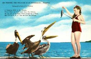 Florida St Petersburg Feeding The Pelicans