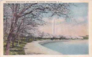 Washington DC Washington Monument And Cherry Blossoms