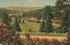 Postcard Taos Canyon from Palo Flechado Pass New Mexico