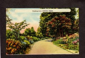 TN Greetings From Linden Tenn Tennessee Postcard Linen PC
