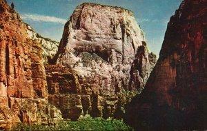 Zion National Park, Utah, UT, Great White Throne, Chrome Vintage Postcard g9251